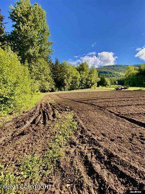 Lot C Orchard Subdivision, Haines, AK 99827 (MLS #21-12860) :: Wolf Real Estate Professionals