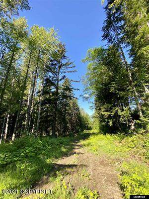 Lot B Orchard Subdivision, Haines, AK 99827 (MLS #21-12861) :: Wolf Real Estate Professionals