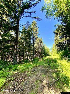 Lot A Orchard Subdivision, Haines, AK 99827 (MLS #21-12862) :: Wolf Real Estate Professionals