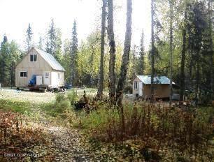 L21 No Road, Remote, AK 99000 (MLS #21-13568) :: Wolf Real Estate Professionals