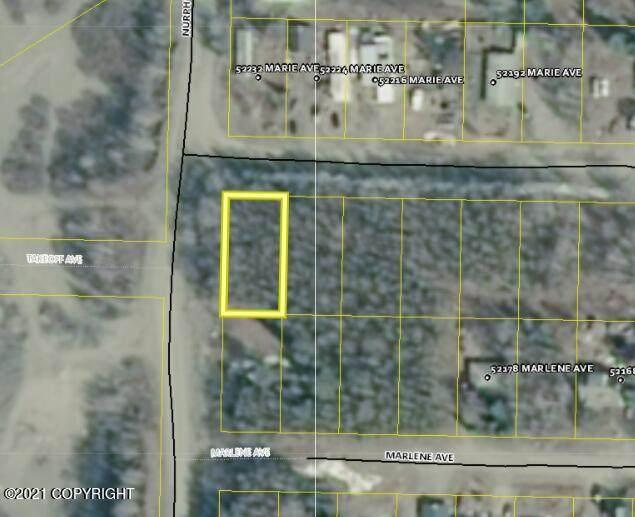 L10 Marie Avenue, Nikiski/North Kenai, AK 99635 (MLS #21-14878) :: Wolf Real Estate Professionals