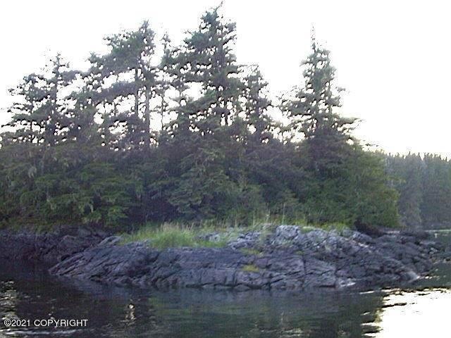 0000 Pt Baker Island, Point Baker, AK 99927 (MLS #21-14947) :: Wolf Real Estate Professionals