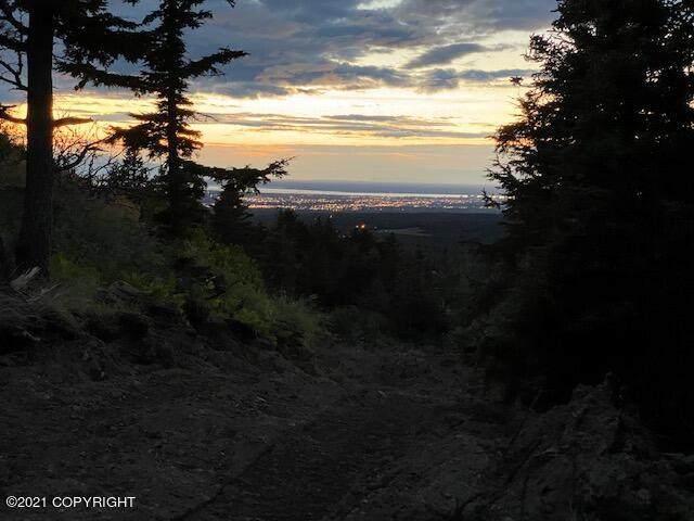 L3 King Heights, Anchorage, AK 99516 (MLS #21-2386) :: RMG Real Estate Network | Keller Williams Realty Alaska Group