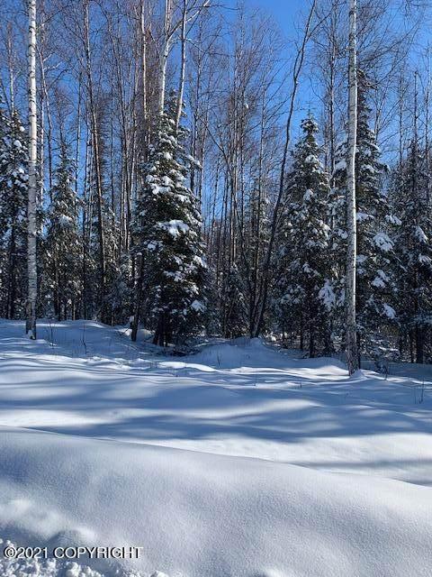 2841 Castle Drive, Houston, AK 99623 (MLS #21-2773) :: Daves Alaska Homes