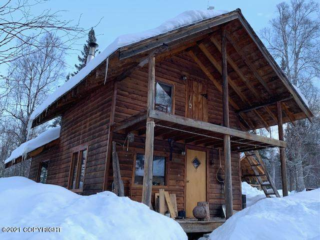 Tr M No Road Chase Area, Talkeetna, AK 99676 (MLS #21-3275) :: Wolf Real Estate Professionals