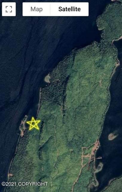L10B-A Wadleigh Island, Klawock, AK 99925 (MLS #21-3350) :: Powered By Lymburner Realty