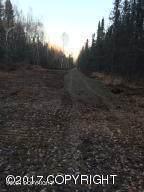 D003 Parks Highway Mile 93-94, Talkeetna, AK 99676 (MLS #21-3412) :: Daves Alaska Homes