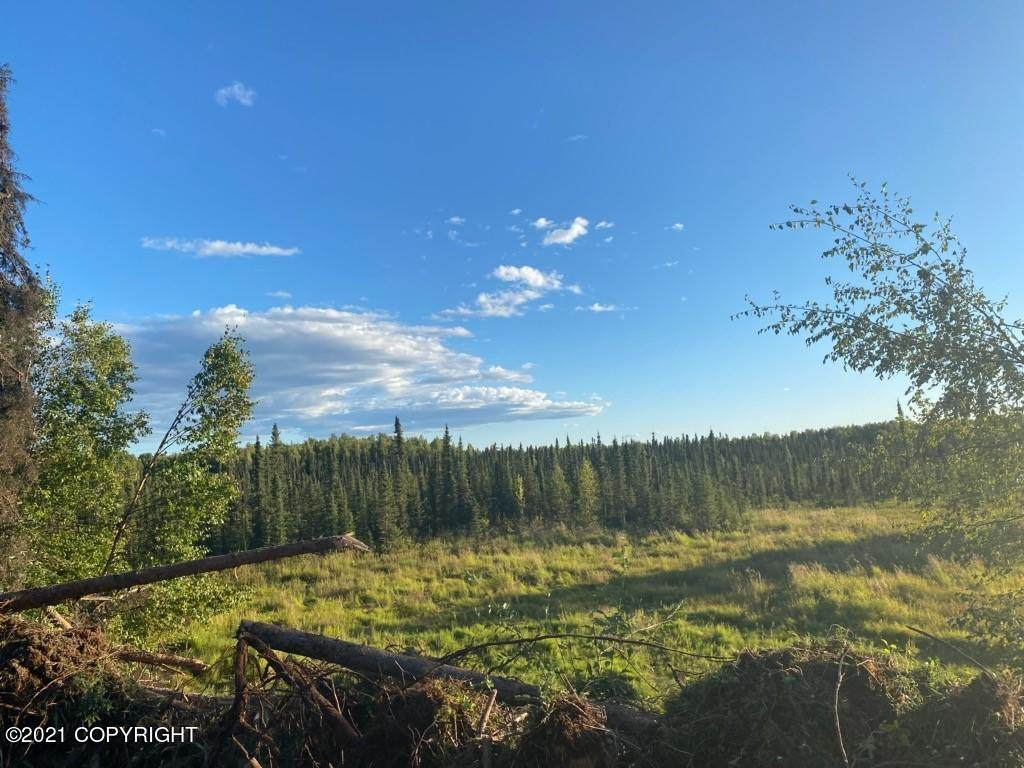 15790 Timber Circle - Photo 1
