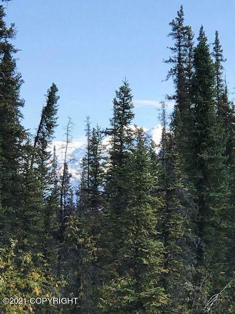 Mi 116.9 Richardson Highway, Glennallen, AK 99588 (MLS #21-3969) :: RMG Real Estate Network | Keller Williams Realty Alaska Group