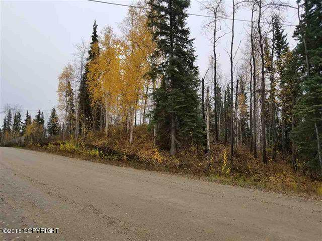 1020 Pickering Drive, Fairbanks, AK 99709 (MLS #21-4005) :: Wolf Real Estate Professionals