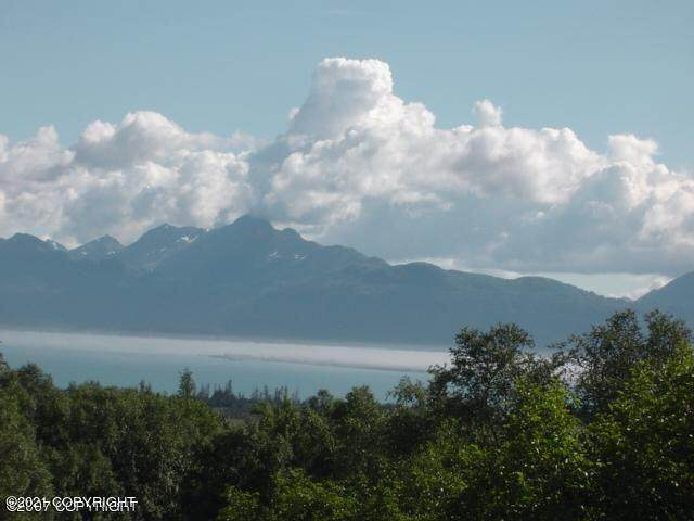000 Bench Circle, Homer, AK 99603 (MLS #21-4138) :: Wolf Real Estate Professionals