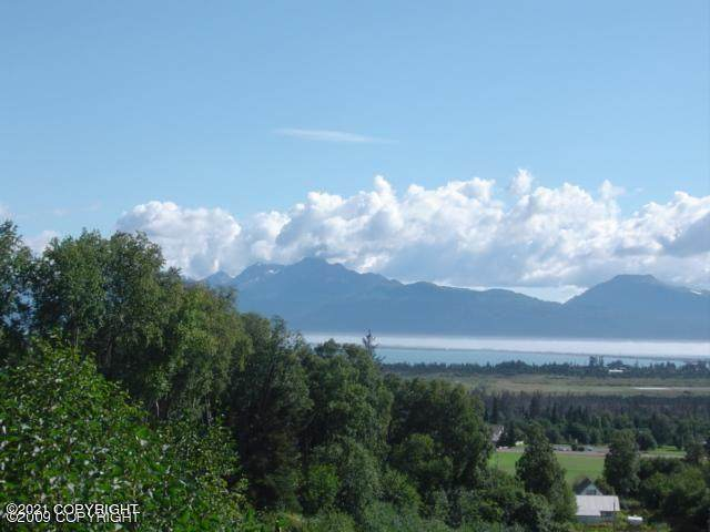 000 Bench Circle, Homer, AK 99603 (MLS #21-4141) :: Wolf Real Estate Professionals