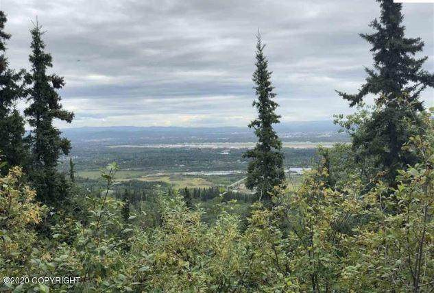 1454 Chena Ridge Road, Fairbanks, AK 99709 (MLS #21-4185) :: Wolf Real Estate Professionals