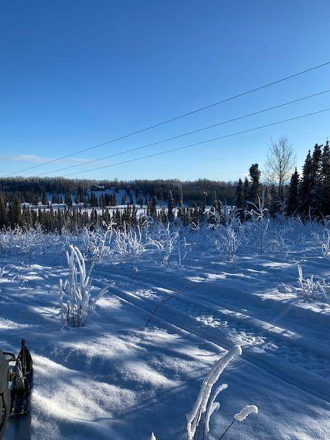 000 T 5N R 8W Sec 6 Seward Meridia, Sterling, AK 99672 (MLS #21-4749) :: Daves Alaska Homes
