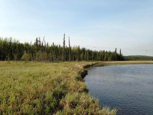 001 Moose River 12 Acres, Sterling, AK 99672 (MLS #21-4775) :: Daves Alaska Homes