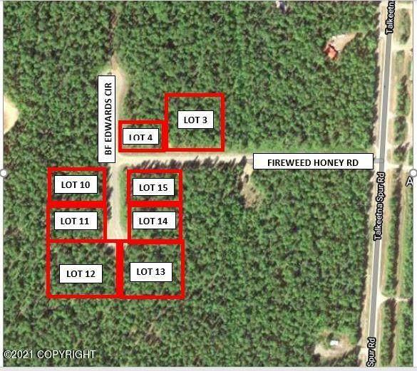 14875 E Fireweed Honey Road, Talkeetna, AK 99676 (MLS #21-5019) :: Daves Alaska Homes