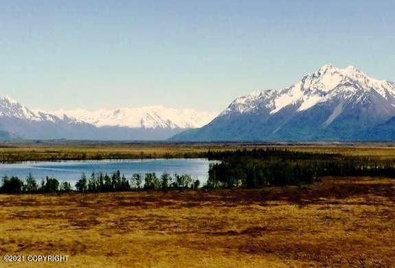 100 W Bradsong Street, Wasilla, AK 99654 (MLS #21-5574) :: The Adrian Jaime Group | Keller Williams Realty Alaska