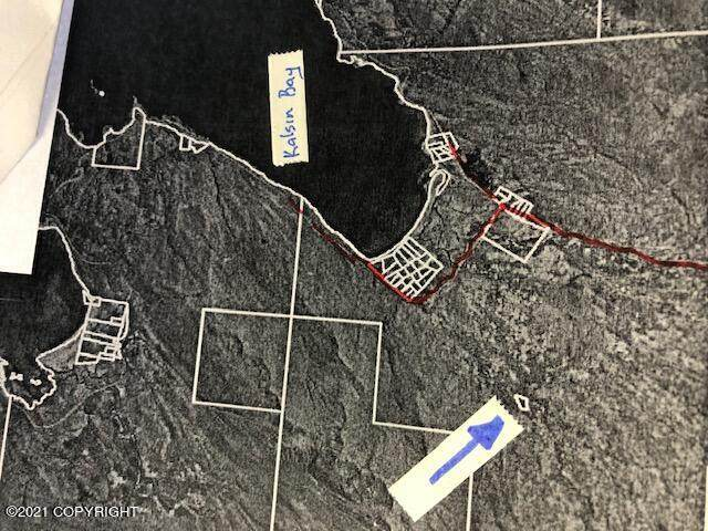 30001 Chiniak Highway, Chiniak, AK 99615 (MLS #21-5844) :: Wolf Real Estate Professionals