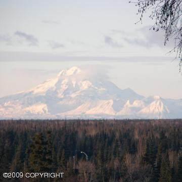 https://bt-photos.global.ssl.fastly.net/alaska/orig_boomver_1_21-5956-2.jpg