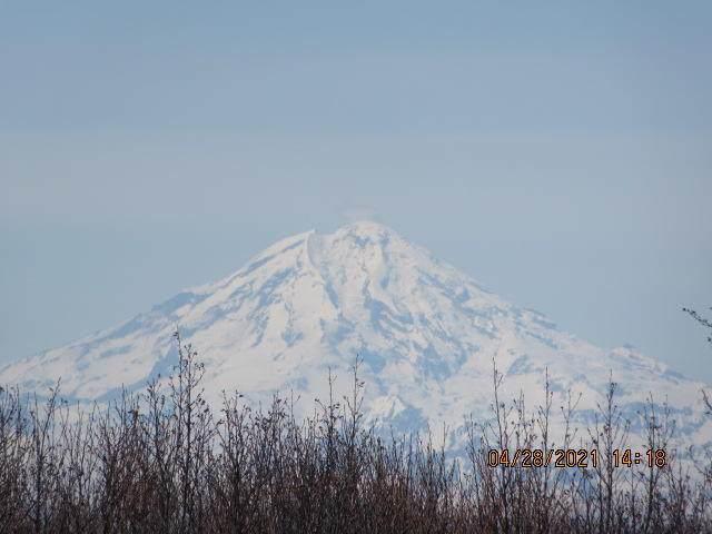 10372 Katrina Boulevard, Ninilchik, AK 99639 (MLS #21-6019) :: Daves Alaska Homes