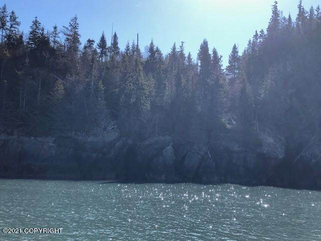 L6 Bear Island, Remote, AK 99603 (MLS #21-6188) :: RMG Real Estate Network | Keller Williams Realty Alaska Group