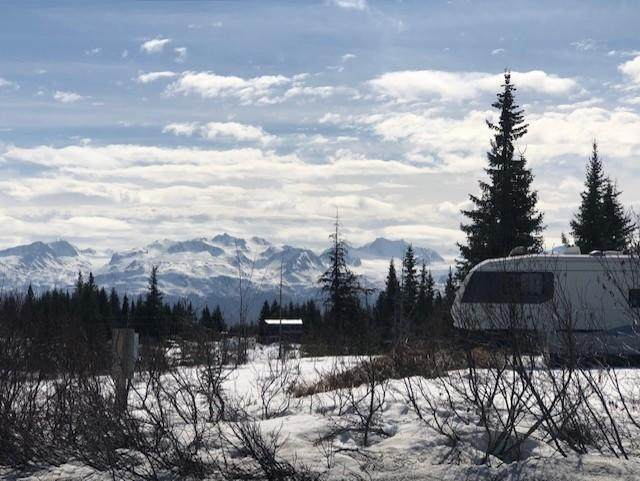 47665 E End Road, Homer, AK 99603 (MLS #21-6348) :: Wolf Real Estate Professionals