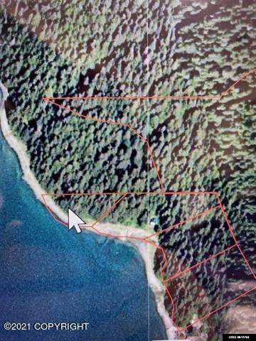 L12 B1 Legal Address Only, Remote, AK 99000 (MLS #21-6434) :: Wolf Real Estate Professionals