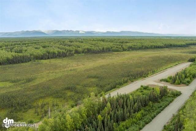 2269 N Skye L18 Circle, Big Lake, AK 99652 (MLS #21-6532) :: Wolf Real Estate Professionals