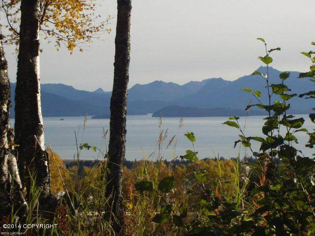 000 E Hill Road, Homer, AK 99603 (MLS #21-6910) :: Wolf Real Estate Professionals