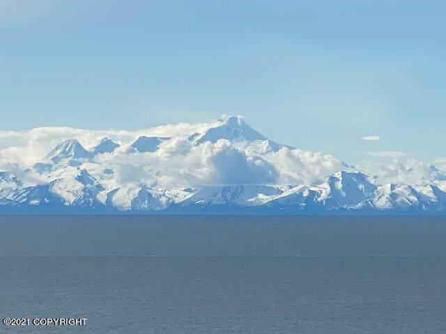 https://bt-photos.global.ssl.fastly.net/alaska/orig_boomver_1_21-6976-2.jpg