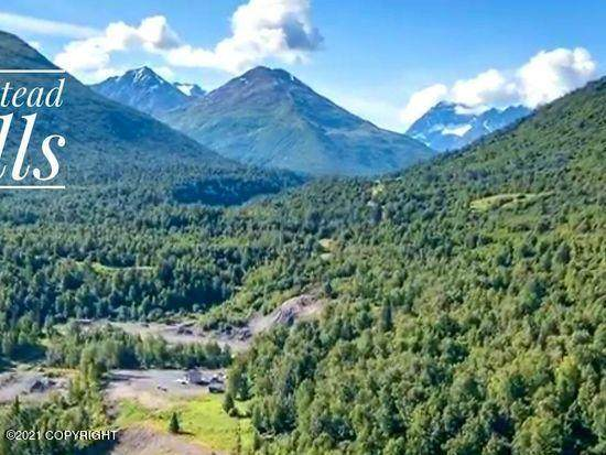 11414 S Back Home Drive, Palmer, AK 99645 (MLS #21-814) :: Wolf Real Estate Professionals