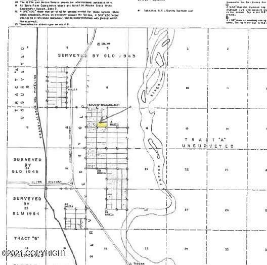 Mi 116.4 Richardson Highway, Glennallen, AK 99588 (MLS #21-8812) :: Wolf Real Estate Professionals