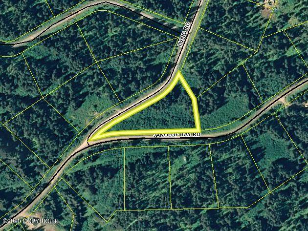 2305 Jakolof Bay Road, Seldovia, AK 99663 (MLS #21-9048) :: The Adrian Jaime Group | Real Broker LLC