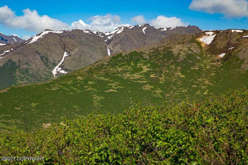 7690 Big Mountain Drive - Photo 1