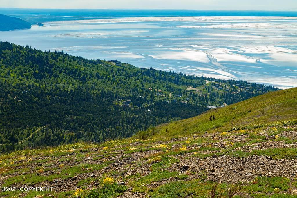 7700 Big Mountain Drive - Photo 1