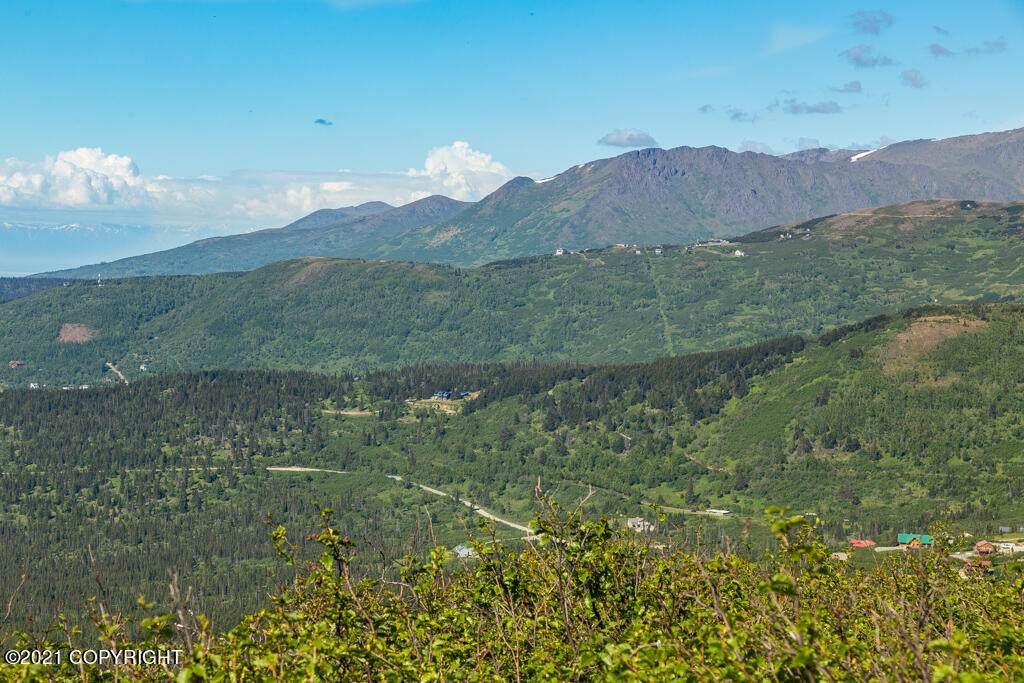 L2 Paine Road - Photo 1
