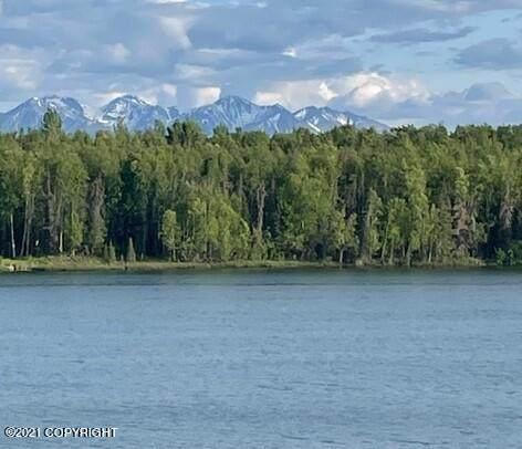 2787 N Monroe Circle, Wasilla, AK 99623 (MLS #21-9332) :: Daves Alaska Homes