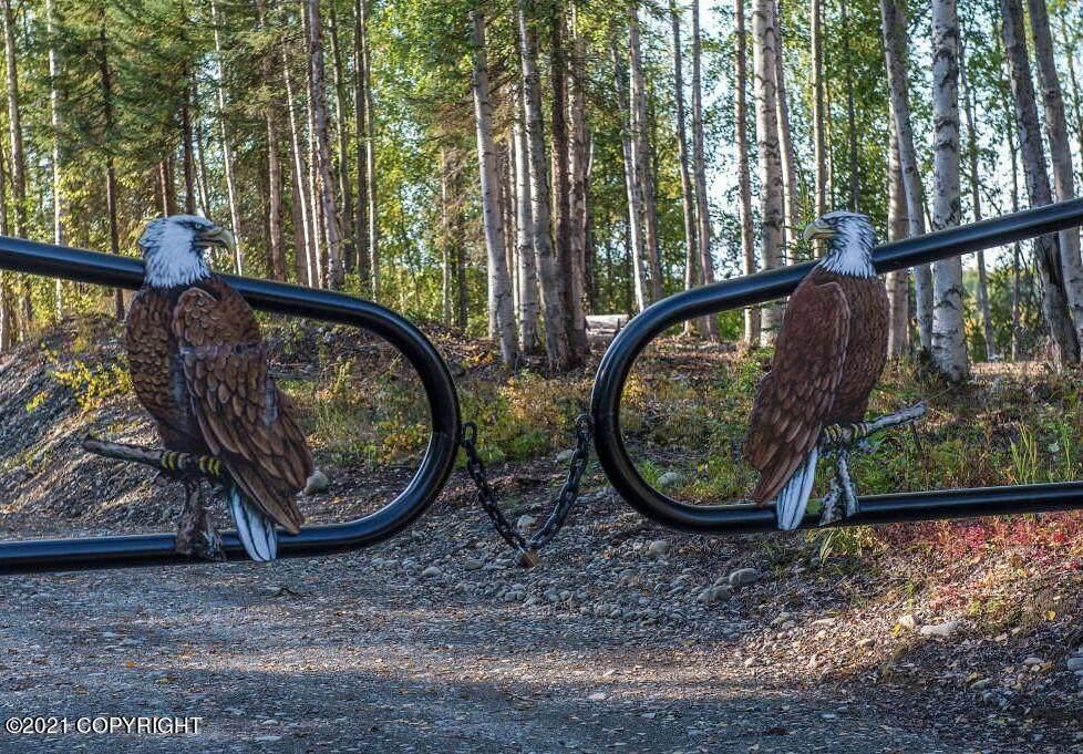 52417 Snowy Owl Circle - Photo 1