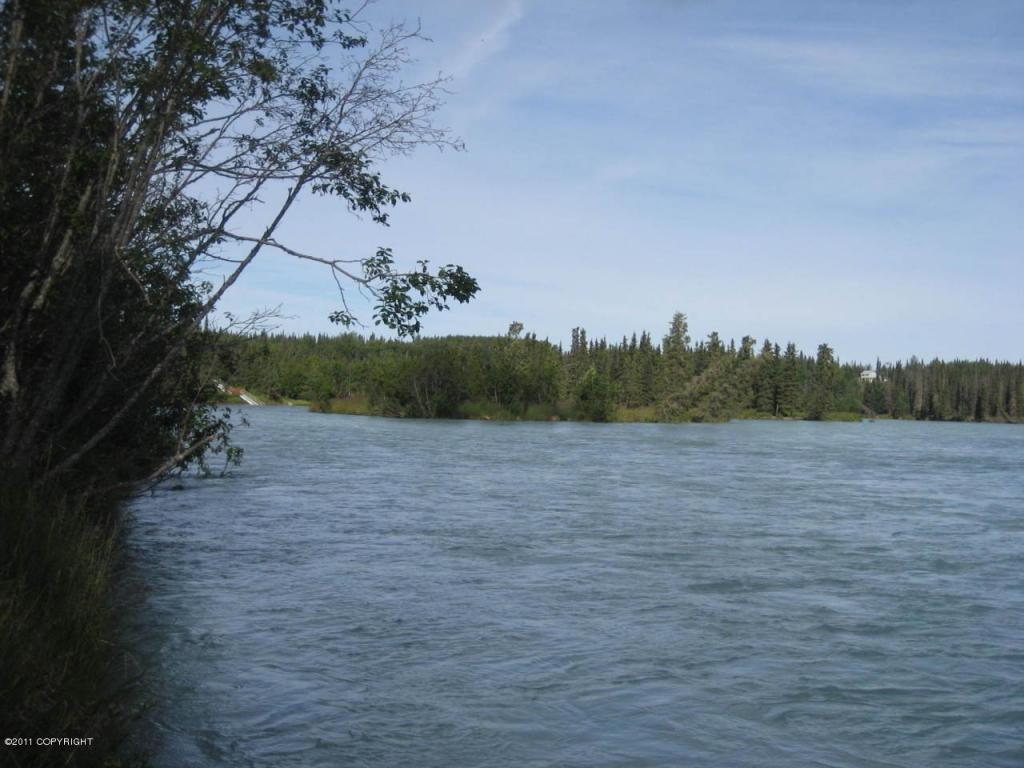 L2 Kasilof River Circle - Photo 1