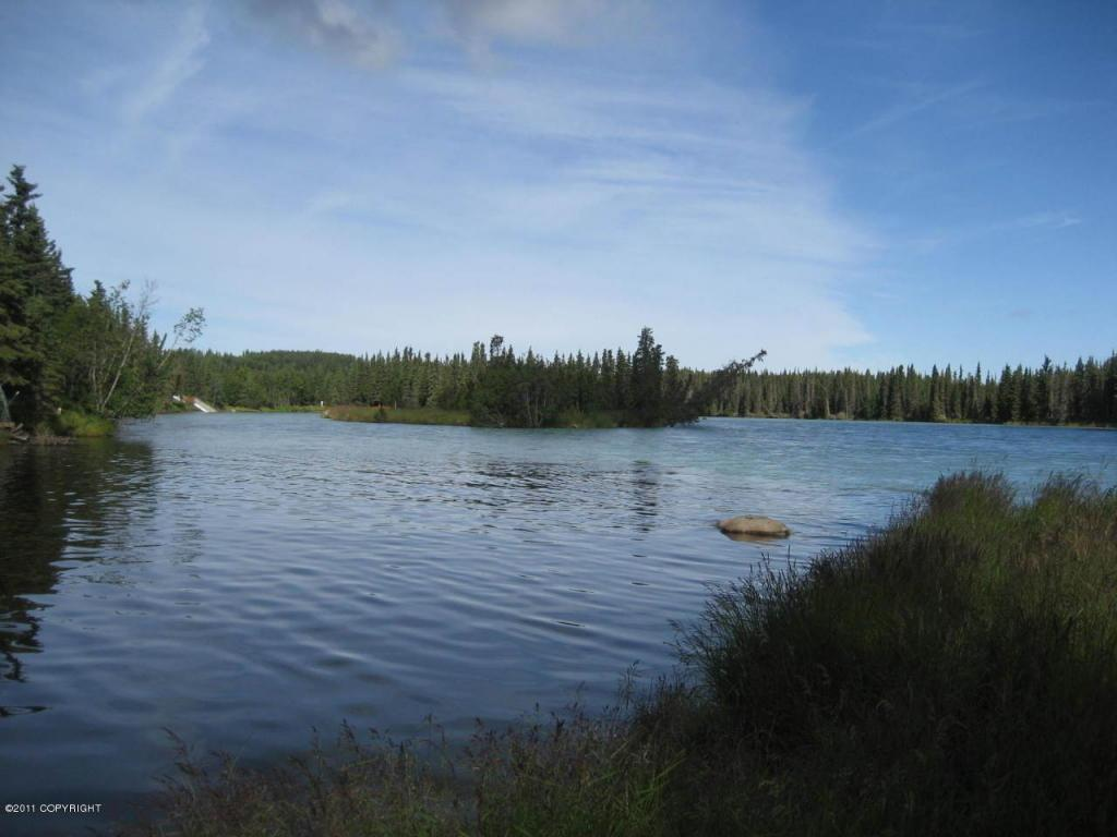 L3 Kasilof River Circle - Photo 1