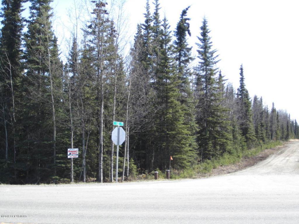 34665 Sterling Highway - Photo 1