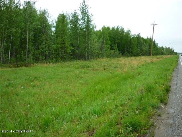 TL2744 Bradway Road, North Pole, AK 99705 (MLS #14-16598) :: Wolf Real Estate Professionals