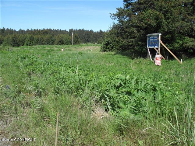 38057 Chiniak Highway, Chiniak, AK 99615 (MLS #14-17448) :: Real Estate eXchange