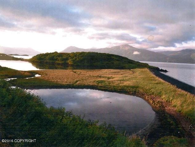 000 Spiridon Bay, Larsen Bay, AK 99624 (MLS #16-13612) :: Channer Realty Group