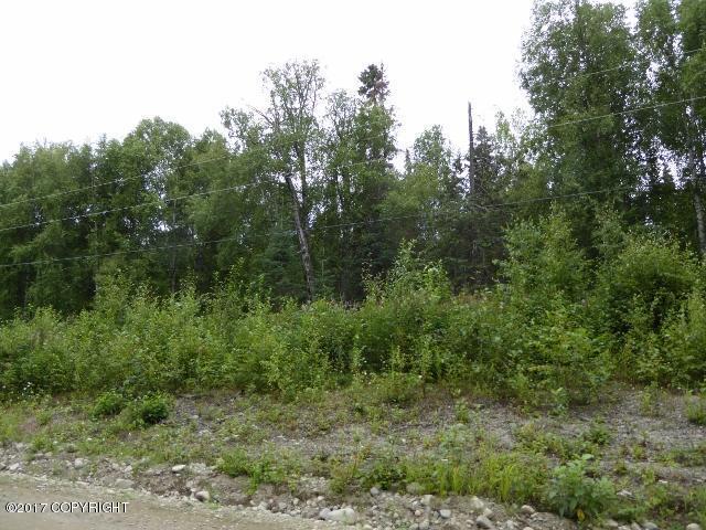 32770 S Mckinley View Drive, Talkeetna, AK 99676 (MLS #17-13709) :: Real Estate eXchange