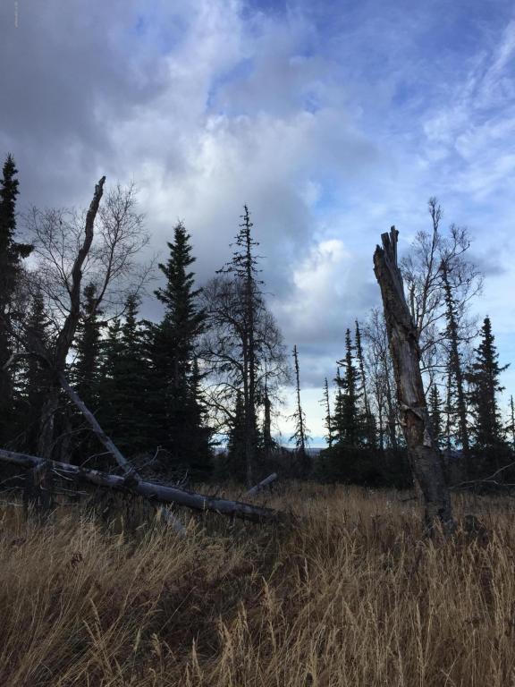 000 Caribou Hiils Remote, Ninilchik, AK 99639 (MLS #17-17462) :: Core Real Estate Group