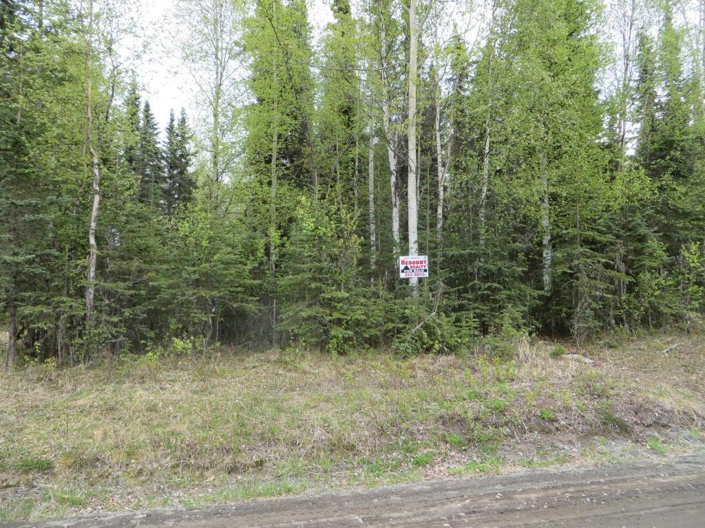 5220 Silver Salmon Drive - Photo 1