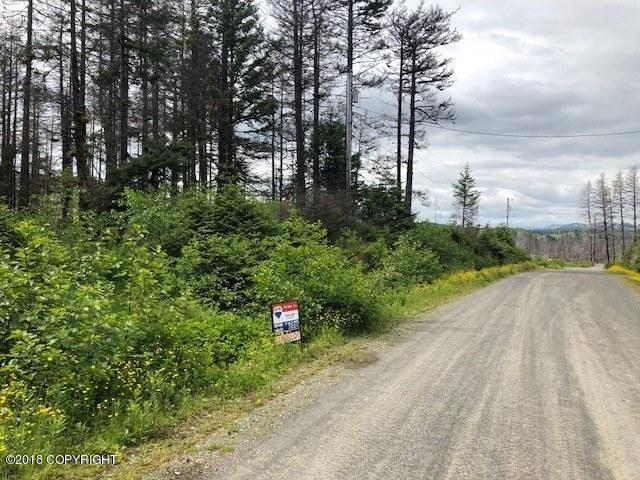 43191 Spruce Way, Chiniak, AK 99615 (MLS #18-10114) :: The Huntley Owen Team
