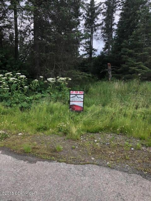 3833 Lakeside Circle, Homer, AK 99603 (MLS #18-12072) :: Real Estate Brokers of Alaska