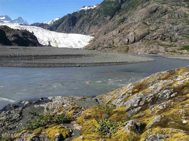 L5 B6 Petrof Glacier, Remote, AK 99000 (MLS #18-12402) :: Channer Realty Group
